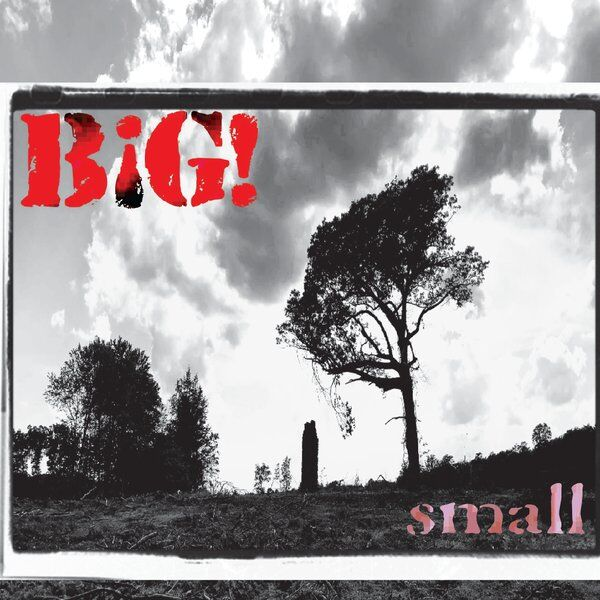 Cover art for Small