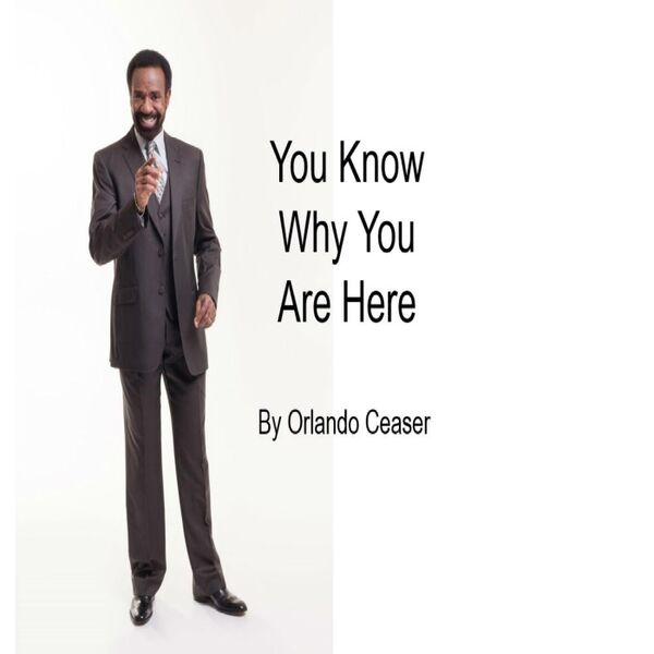 Cover art for You Know Why You Are Here
