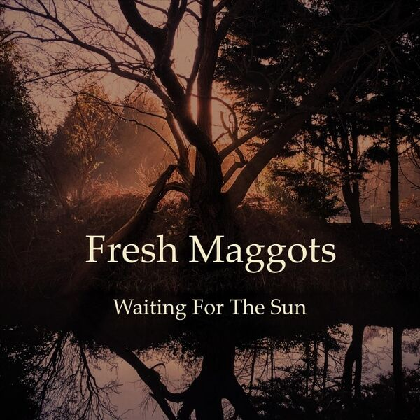 Cover art for Waiting for the Sun