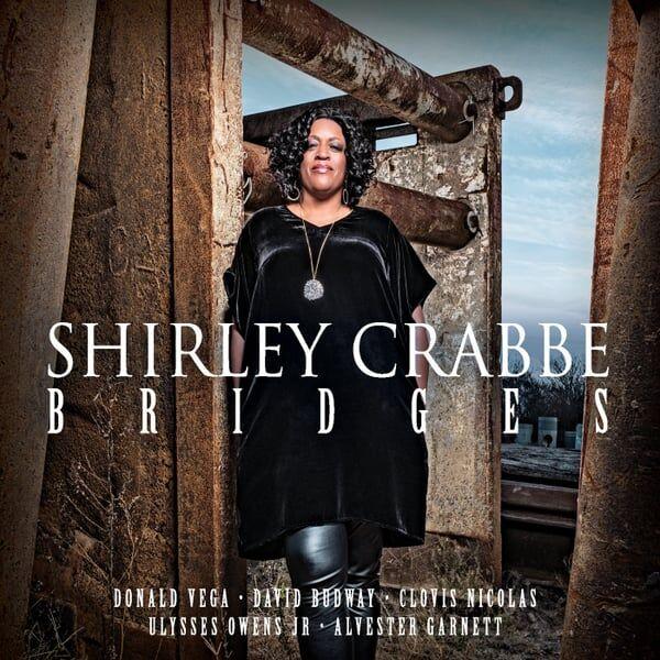 Cover art for Bridges