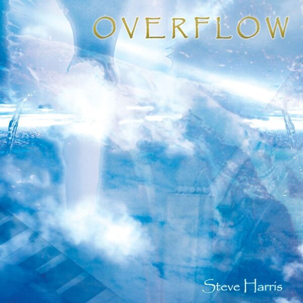 Cover art for Overflow