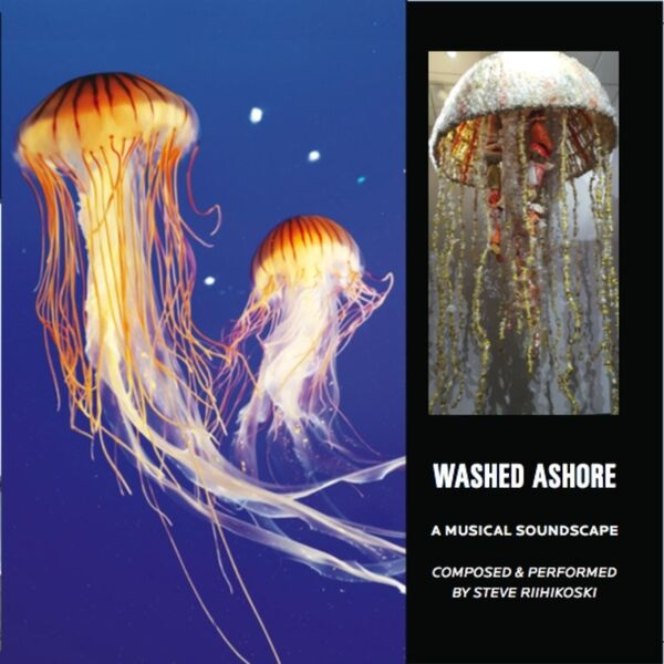 Cover art for Washed Ashore: A Musical Soundscape