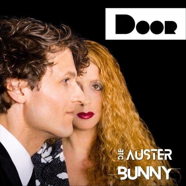 Cover art for Door