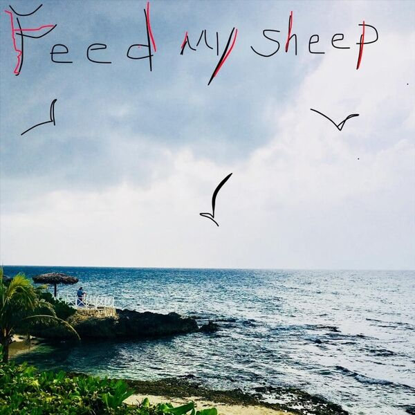 Cover art for Feed My Sheep