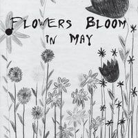 Flowers Bloom in May