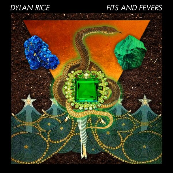 Cover art for Fits and Fevers