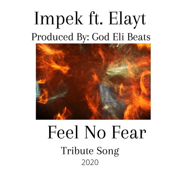 Cover art for Feel No Fear (Tribute Song)