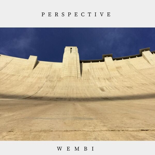 Cover art for Perspective