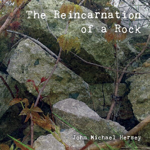 Cover art for The Reincarnation of a Rock