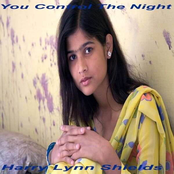 Cover art for You Control the Night