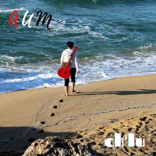 Cover art for Aum