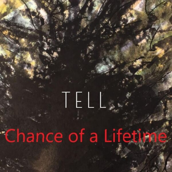 Cover art for Chance of a Lifetime