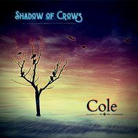 Shadow of Crows