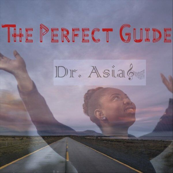 Cover art for The Perfect Guide