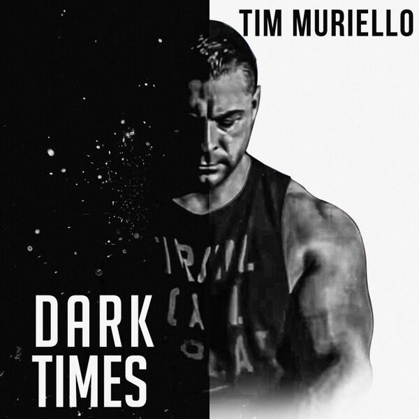 Cover art for Dark Times