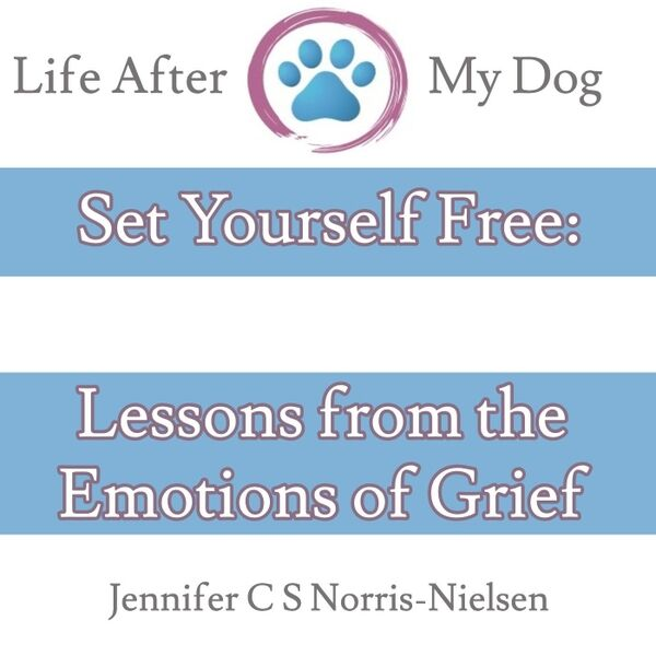 Cover art for Set Yourself Free: Lessons from the Emotions of Grief