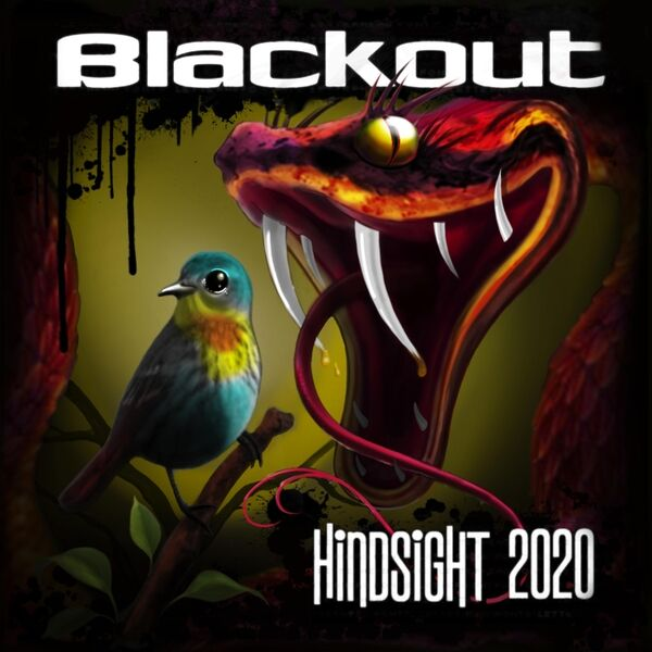 Cover art for Hindsight 2020