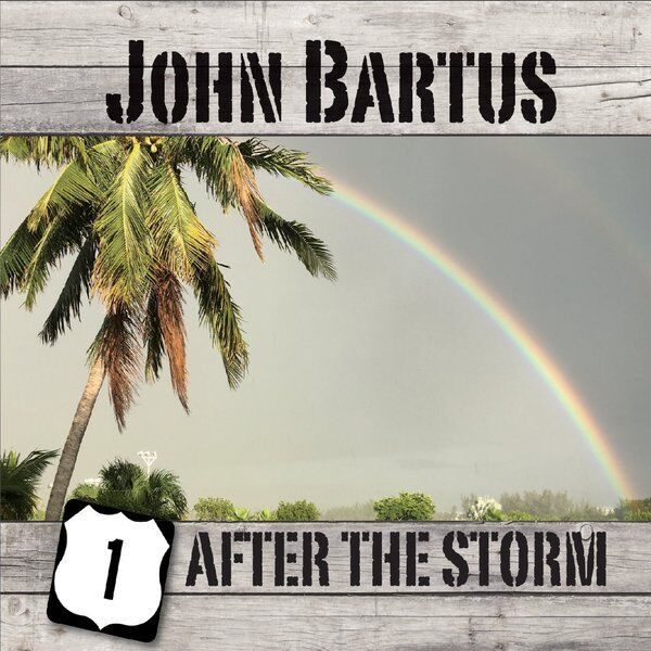 Cover art for After the Storm