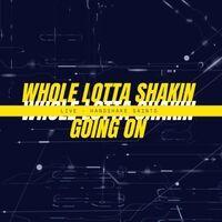 Whole Lotta Shakin Goin On (Live)