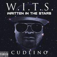 W.I.T.S. (Written in the Stars)
