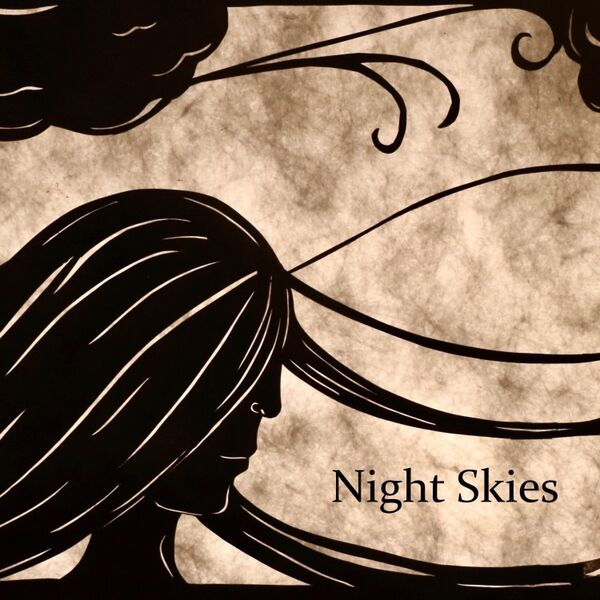 Cover art for Night Skies
