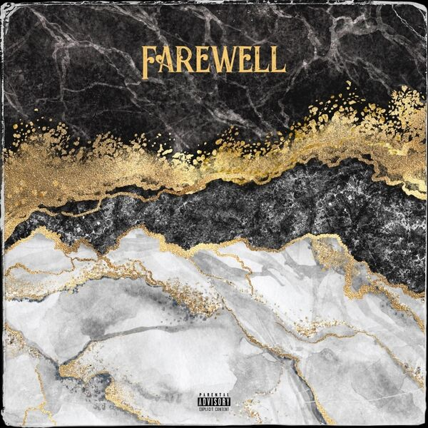 Cover art for Farewell (Remix)